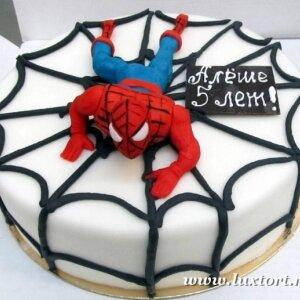 Торт Человек Паук на паутине